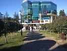 Московский, улица Горького на фото Сочи