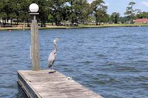 Lake Conroe Water Sports, Montgomery, United States