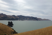 Quail Island, Christchurch, New Zealand