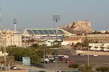 Estadio Jose Rico Perez, Alicante, Spain