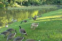 Burdette Park, Evansville, United States