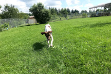 Jager and Friends Dog Park, Somerset, United States