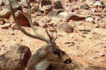 Deer Park, Tirupati, India