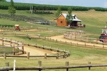 Cherry Crest Adventure Farm, Ronks, United States