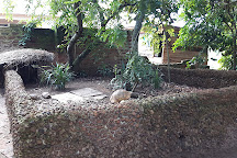 Reptile village in Entebbe, Entebbe, Uganda