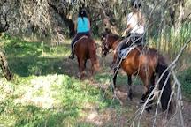 Trailriders Horse Trekking, Gouvia, Greece