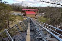 Runaway Mountain Coaster, Branson, United States