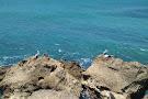Faro Punta Higueras