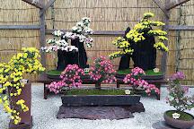 Sennyuji Temple, Kyoto, Japan