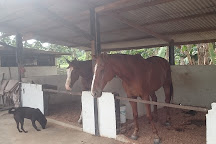 Noah's Ark Natural Animal Sanctuary, Johor Bahru, Malaysia