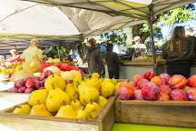 Marrickville Organic Food and Farmers Markets, Marrickville, Australia