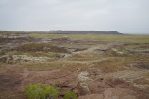 Jasper Forest, Petrified Forest National Park, United States