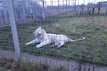 Hamerton Zoo Park, Sawtry, United Kingdom
