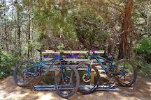 Mystic Mountain Bike Park, Bright, Australia