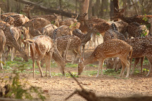 Ballavpur Wildlife Sanctuary, Santiniketan, India