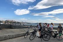 Sardinhas - Oporto Rent Shop and TOURS, Porto, Portugal