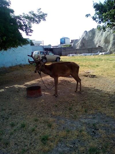 Kamgar Garden باغ کامگار
