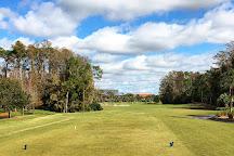 Disney's Palm Golf Course, Orlando, United States