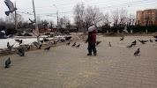 Остановка, улица Пузакова на фото Тулы