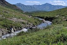 Denali, Denali National Park and Preserve, United States