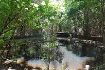 Santuario Ecologico de Pipa, Praia da Pipa, Brazil