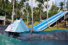 Slip N Fly Party, Ko Pha Ngan, Thailand
