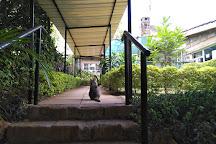 Spinners Web Kenya, Nairobi, Kenya