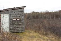 Beaver Creek Conservation Area, Saskatoon, Canada