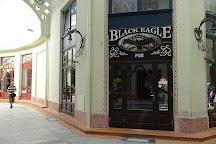 Black Eagle Pub, Oradea, Romania