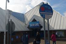 Scarborough SEA LIFE Sanctuary, Scarborough, United Kingdom
