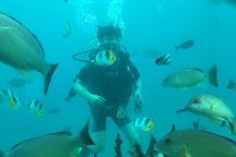Fish Eye Marine Park, Piti, Guam