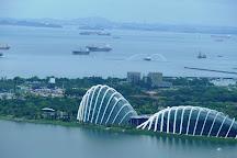 Cloud Forest, Singapore, Singapore