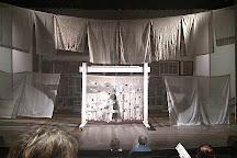 Aurora Theatre, Lawrenceville, United States