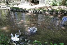 Le Parc du Moulin a Tan, Sens, France
