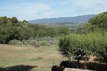 Provence Wine Tours, Aix-en-Provence, France