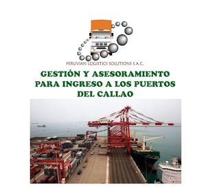 Peruvian Logistics Solutions S.A.C. 5