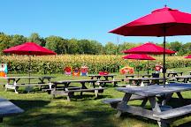 Wightman's Farm, Morristown, United States