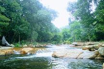 Chinnar Wildlife Sanctuary, Munnar, India