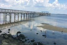 Safety Harbor Marina Park and Fishing Pier, Safety Harbor, United States