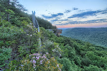 Savage Gulf State Natural Area, Tennessee, United States