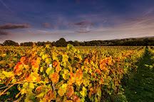 Bolney Wine Estate, Bolney, United Kingdom