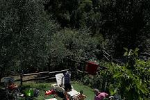 Agriturismo Valle Chiappella, San Colombano Certenoli, Italy