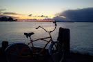 Island House Bike Shop