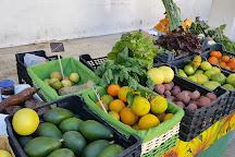 Farmers' Market, Plaza ABC, Estepona, Spain