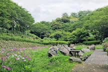 Ajisai Park, Miyakonojo, Japan