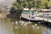 Sodegaura Park, Sodegaura, Japan