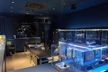 Sumida Aquarium, Oshiage, Japan