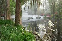 Magnolia Plantation & Gardens, Charleston, United States