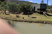 Tasmania Zoo, Riverside, Australia