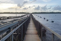 Demerara Harbour Bridge, Georgetown, Guyana